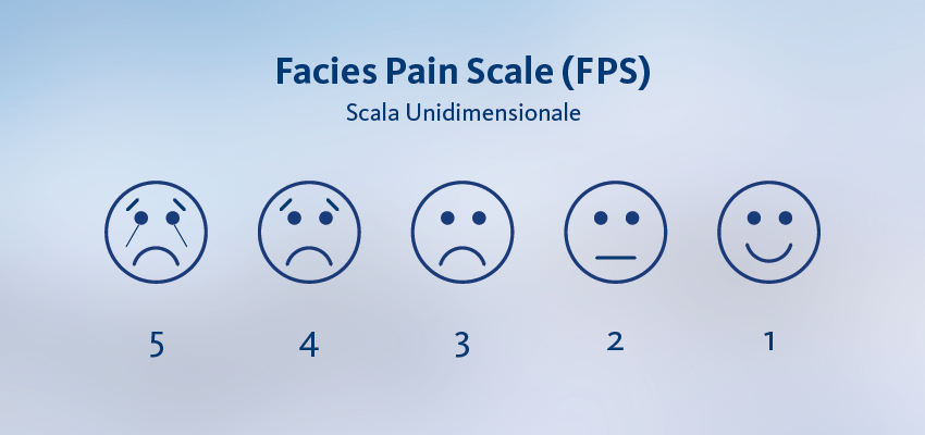 scala face
